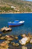 litet fartygfiske Royaltyfri Foto