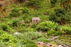 Litet gammalt hus i Cabo Verde Arkivfoton