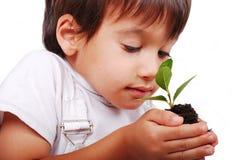 Litet gulligt barn som rymmer den gröna växten Arkivbilder