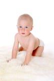 Litet gulligt behandla som ett barn krypningen som isoleras på vit bakgrund Arkivfoto