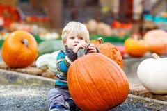 Litet gulligt ungepojkesammanträde med enorm pumpa på halloween eller th Arkivfoto