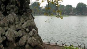 Litet hörn i sjön i höst arkivfoto