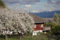 Litet hus i den franska bygden Arkivfoton