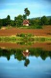 Litet hus nära floden Fotografering för Bildbyråer
