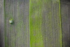 Litet isolerat hus i tunna för jordbruks- land arkivbild
