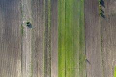 Litet isolerat hus i tunna för jordbruks- land arkivfoton
