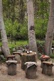 Litet kafé av trädstammar Royaltyfri Fotografi