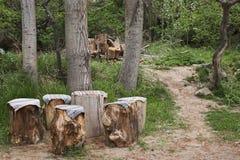 Litet kafé av trädstammar Arkivfoton