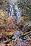 Litet långsamt vatten som är aktuellt på kullarna i träna royaltyfri foto