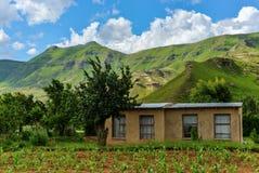 Litet lantbrukarhem i Lesotho Arkivfoto