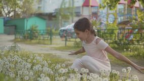 Litet lockigt och mer flicka som blåser maskrosen och mer ultrarapidvideo liten flicka som spelar med blommamaskrosor in arkivfilmer