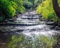 Litet momentstilvattenfall försiktigt Rolls till och med fridsam skog arkivfoton