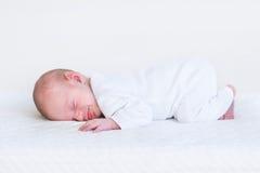 Litet nyfött behandla som ett barn att sova på den vita filten Arkivbilder