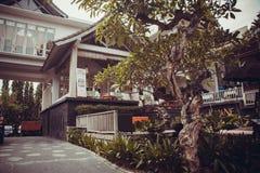 Litet privat hotell i Ubud Royaltyfri Bild