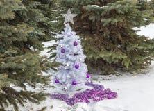 Litet sammanträde för träd för vit jul bland gröna prydliga träd Royaltyfri Fotografi