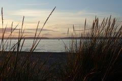 Litet segla fartyg på havet, på en sommarafton, beskådad tanke strandgräset Arkivbild