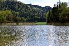 Litet stillsamt sjö/damm bredvid den tyska alpina vägen, Bayern, Tyskland arkivbild