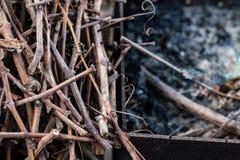 Litet trä för att tända i landsgården Top beskådar Arkivfoto
