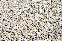 Litet vaggar spritt på jordningen Arkivfoton