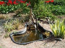 Litet vattendamm i botanisk trädgård Royaltyfria Bilder