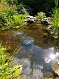 Litet vattensärdrag på Wentworth trädgårdar arkivfoton