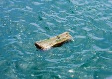 Litet wood stycke med hålet som driver i vatten Arkivfoto