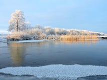 Litewski zima krajobraz Zdjęcie Stock