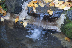 Lithia Park Ashland, Oregon Royalty-vrije Stock Foto's