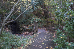 Lithia Park Ashland, Oregon. Lithia Park is the largest and most central park of Ashland, Oregon. It consists of 93 acres of forested canyonland around Ashland stock images