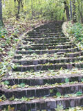 A lithoidal stair is in a park. A lithoidal stair in a park is strewed by leaves in an autumn day Royalty Free Stock Photos
