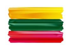 Lithuania kolorowi szczotkarscy uderzenia malująca flaga royalty ilustracja