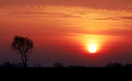 Lithuania sunset. Sunset with tree sillouette. Shot taken in Lithuania Stock Photo