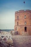 lithuania vilnius vilnius för sikt för stadsområde virsuliskes Vilnius torn av Gedimin Arkivfoton
