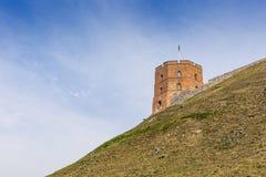lithuania vilnius vilnius för sikt för stadsområde virsuliskes Vilnius torn av Gedimin Royaltyfri Fotografi