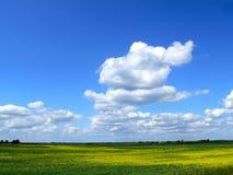 lithuanian ландшафта Стоковая Фотография