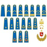 Lithuanian Air Force insignia Royalty Free Stock Photos