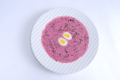 Lithuanian chilled soup with eggs. Lithuanian chilled soup with young beet leaves, fresh cucumber, radish and herbs, served with boiled quail eggs Stock Image