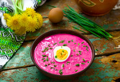 The Lithuanian cold  beetroot soup Royalty Free Stock Photos