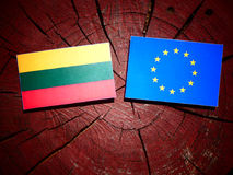 Lithuanian flag with EU flag on a tree stump isolated Royalty Free Stock Images