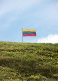Lithuanian flag on sky  background Royalty Free Stock Photography