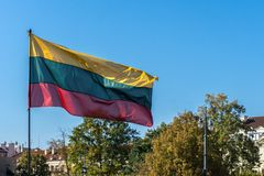 Lithuanian flag flying in blue sky over buildings and trees in city royalty free stock image