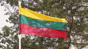 Lithuanian flag waving in the wind stock video footage