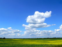 Lithuanian landscape. With clouds in the sky Stock Photography