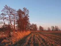 Lithuanian landscape , sunset Royalty Free Stock Image