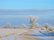 Lithuanian landscape in winter Royalty Free Stock Photos