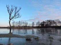 Lithuanian landscape, winter Stock Photography