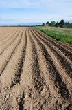 The Lithuanian Soil royalty free stock photo