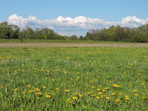 Lithuanian spring landscape Royalty Free Stock Photo