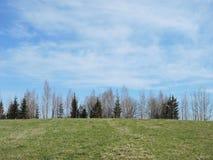 Lithuanian spring landscape Stock Images