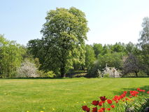 Lithuanian spring landscape Royalty Free Stock Images